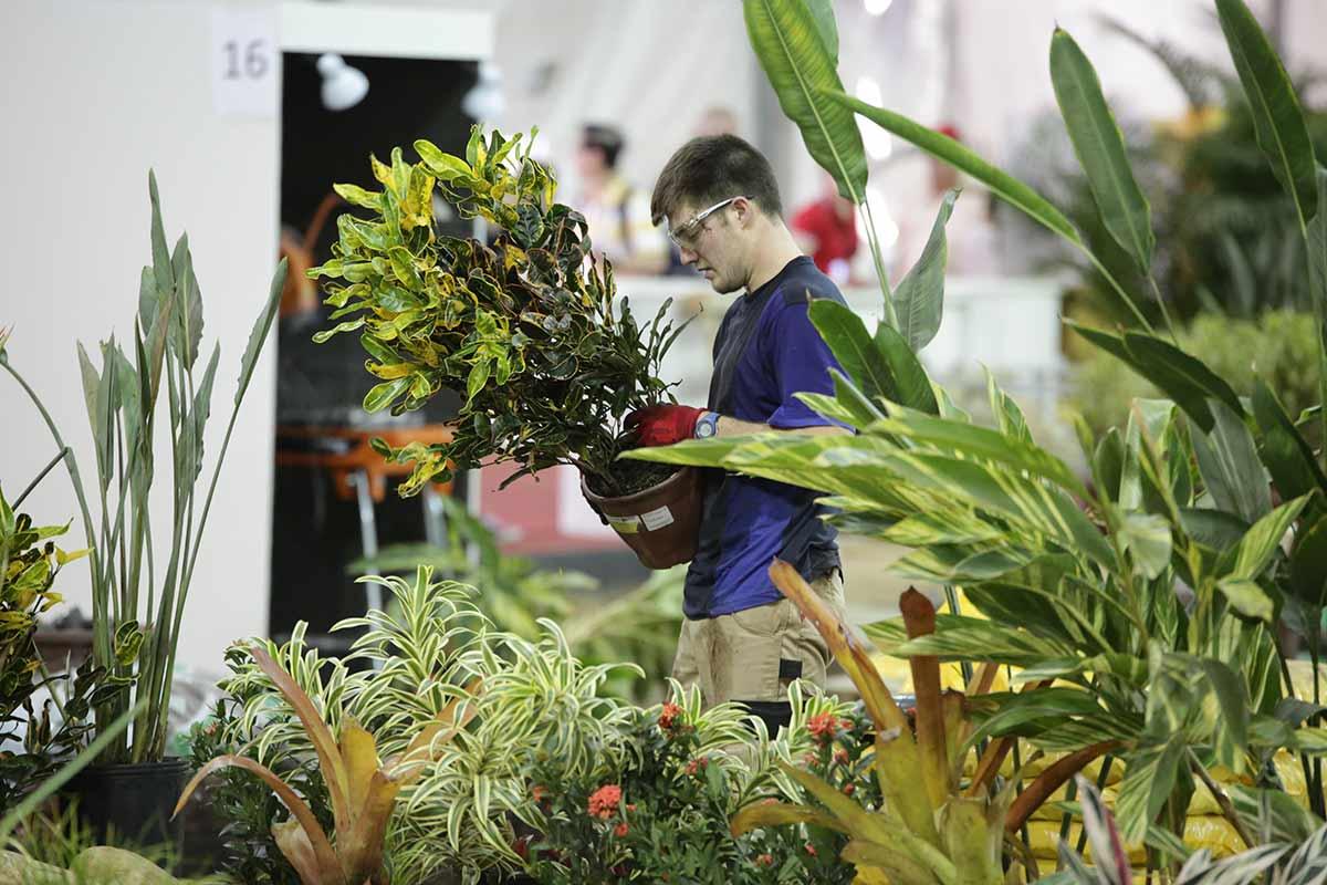 Jardinier jardini re m tier tudes dipl mes salaire for Espace vert synonyme