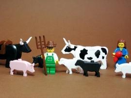 Agriculture : halte aux idées reçues !
