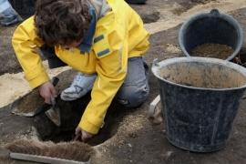 Archéologue territorial