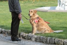 Educateur de chiens guides d'aveugles