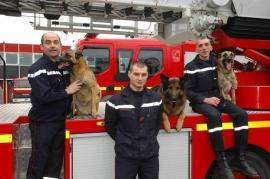 Profession : maître-chien sapeur-pompier