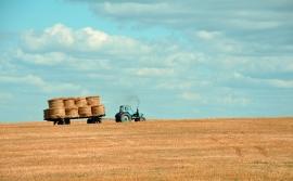 Les métiers qui recrutent dans l'agriculture