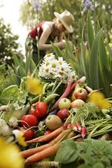 Jardinier (Visuel)