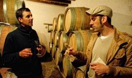 Oenologue, sommelier, maître de chai… Les métiers du vin recrutent !