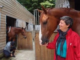 Travailler avec les chevaux : des professionnels témoignent