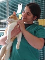 Assistant vétérinaire n'est pas un métier de tout repos !
