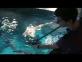 Travailler dans un aquarium : Etienne est soigneur aquariologiste