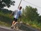 Comment devenir éducateur canin - IFSA 1