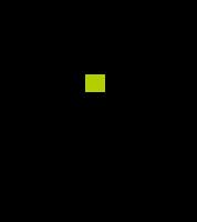 Portrait de quadrille